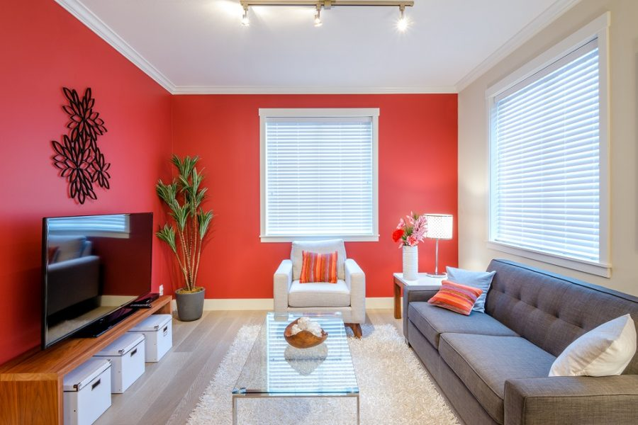 Tips to choose the perfect vastu colour for your home