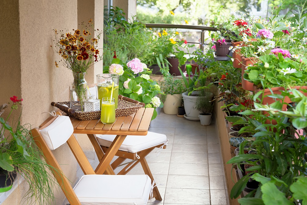 Top 8 Tips And Tricks To Decorate Your Balcony Indigo Paints